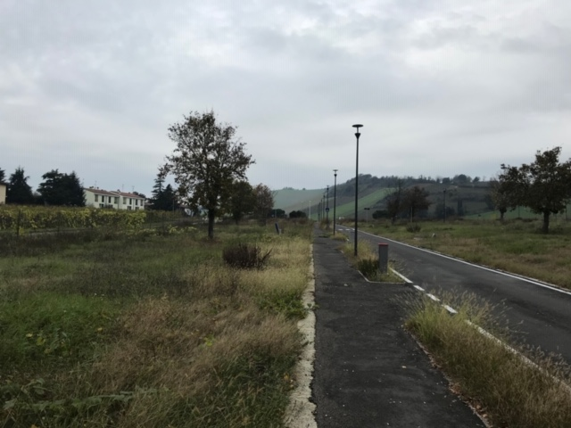Lotti Edificabili - Riolo Terme (2)